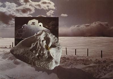 Sloan Nota collage